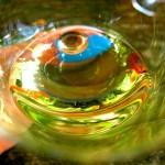 Зеленое вино - мифы и реальность