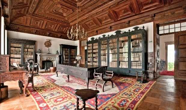 Библиотека дворца, Португалия, Монсау, Виньюш Вердеш