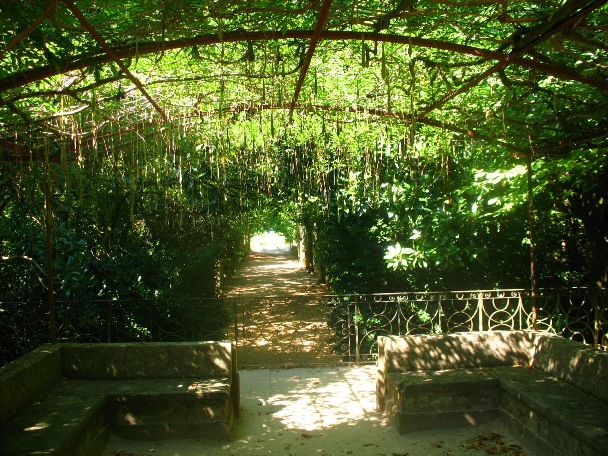 Аллеи парка Паласиу да Брежоейра