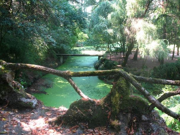Парк Паласиу да Брежоейра