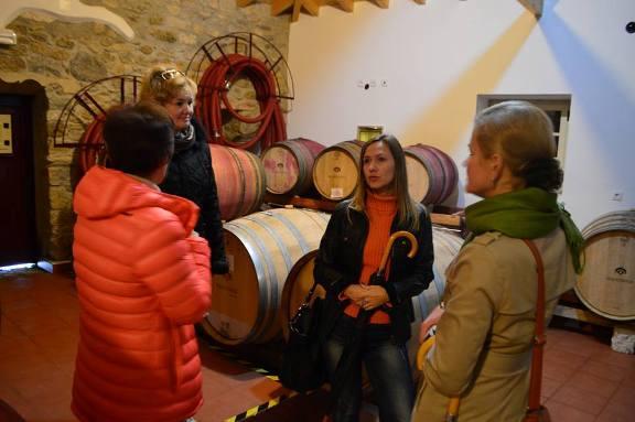 экскурсия на винодельческое хозяйство