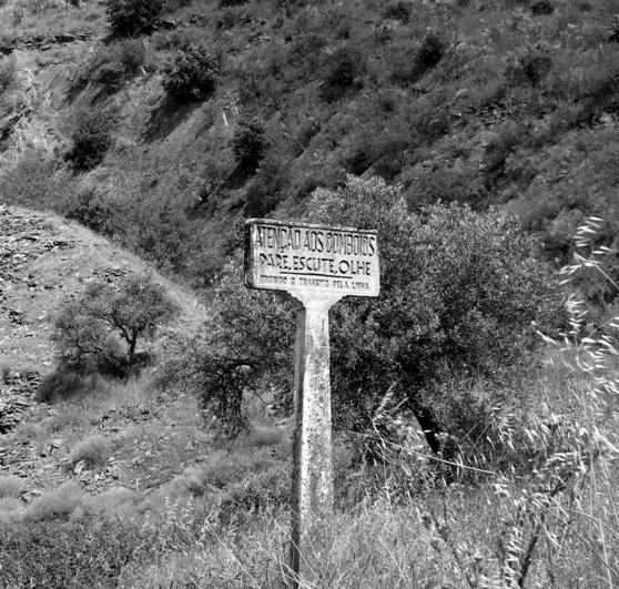 Знак железнодорожного переезда, оставшийся с тех пор, когда здесь еще ходили поезда.