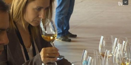Кадр из репортажа португальского канала TVI о конкурсе вин Португалии