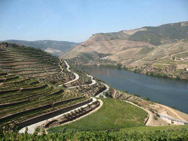 Виноградники на реке Дору
