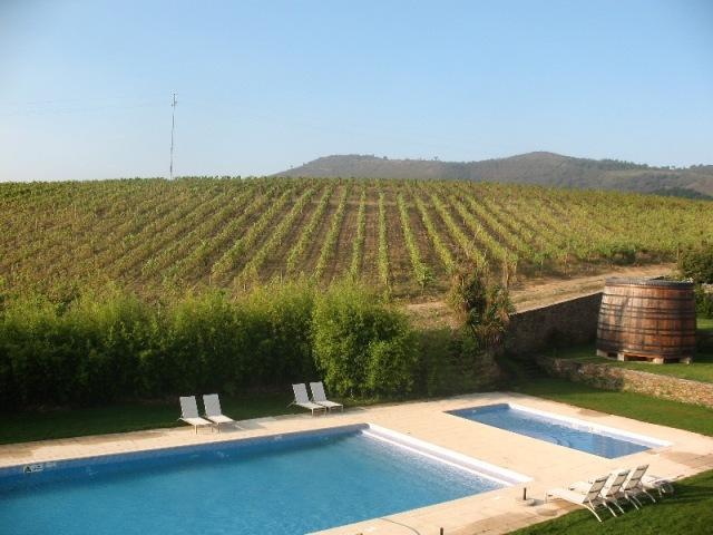 Quinta do Portal и бассейн