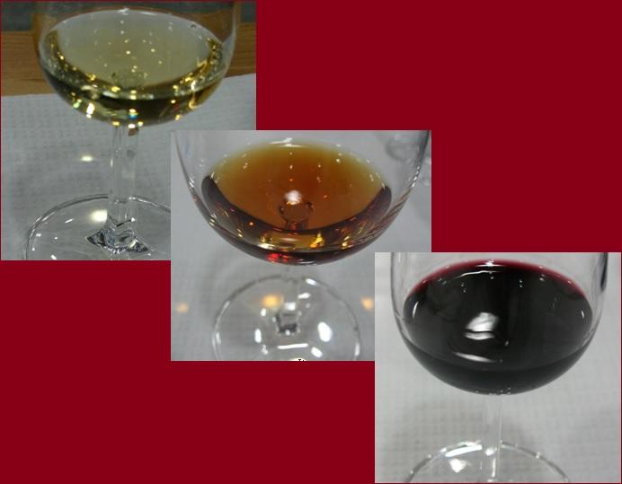 Стили и категории портвейнов - дегустация и мини мастер-класс в Лиссабоне