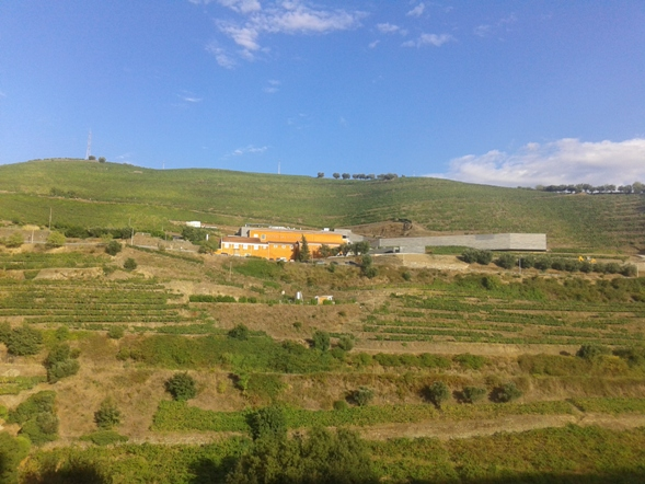 Quinta do Vallado в настоящее время
