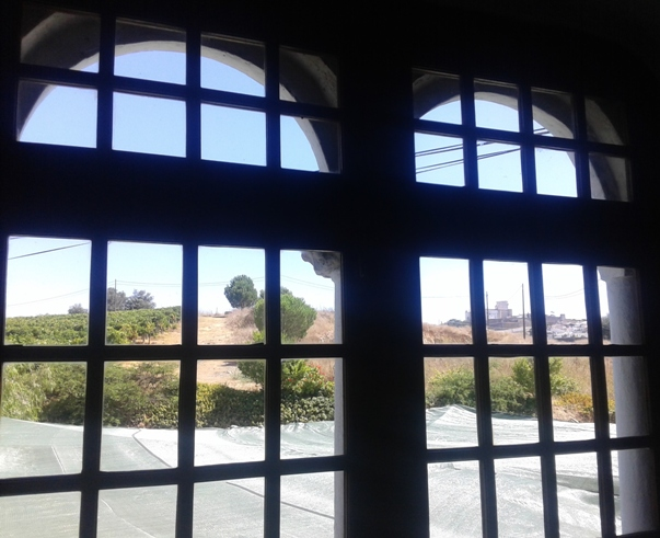 Quinta do Mouro - вид из дегустационного зала на виноградники