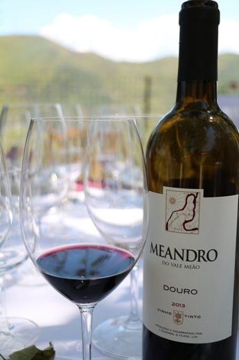 Meandro red 2013