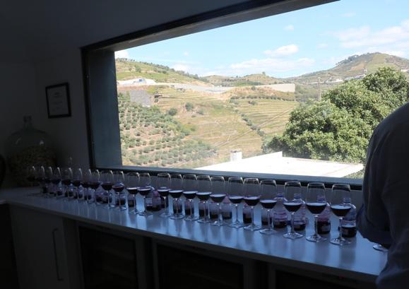 Quinta do Vallado 31 августа 2017 года - это утренние пробы ферментирующихся красных вин...